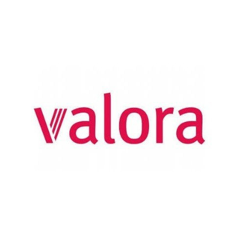 Valora:Reliable data input at point of sale